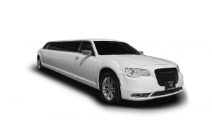 10 Passenger Stretch Limousines (Silver & White)
